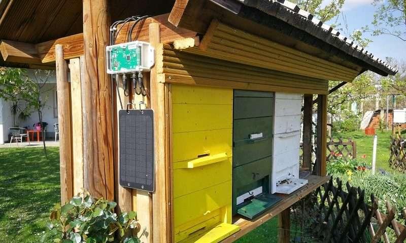 Bienenstockwaage